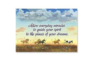 Allow Miracles Horse Magnet