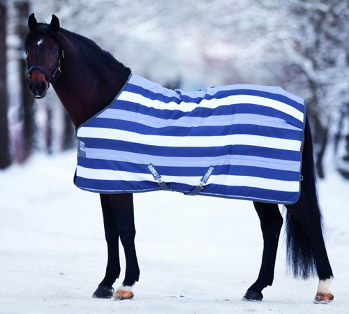 Rambo Newmarket Le Rug In Witney Navy