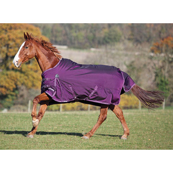 Shires Winter Typhoon 220g Turnout In Purple