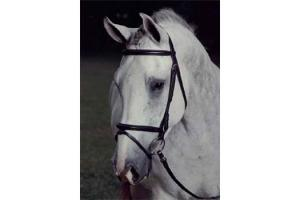 Arc De Triomphe Napoleon Dressage Bridle in Black