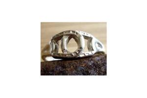 Interlocking Horseshoe Ring by Eimer Designs
