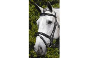 Vespucci Double Raised Snaffle Bridle Black and White