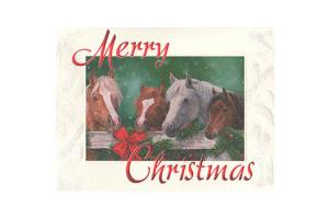 Horses at the Gate Boxed Christmas Cards