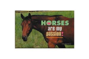 Horses Are My Passion Magnet