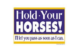 Hold Your Horses Reflective Trailer Sign