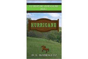 A Canyon Meadows Story Book 1 Hurricane, Sofcover, | ISBN-10: 978-0-9844511-0-4| ISBN-13:9780984451104