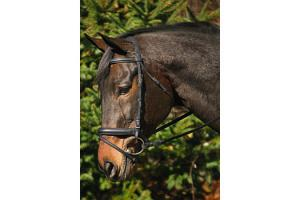 Henri De Rivel Dressage  Black Bridle with Crank
