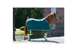 Amigo Jersey Cooler With Attached Surcingle in Teal and Lemon