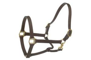 Ovation Triple-Stitched  Brown Show Halter