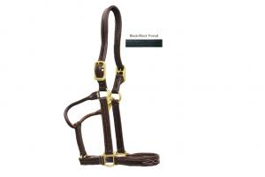 Walsh Signature Padded Halter with Fancy Stitching - Black Leather