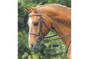 Vespucci Plain Raised Hunter Bridle Brown
