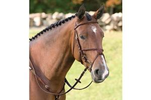Vespucci Fancy Raised Brown Jumper Bridle with Figure 8