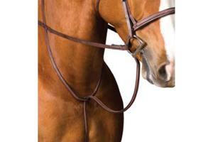 Chestnut Collegiate Raised Standing Martingale