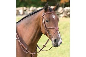 Vespucci Fancy Raised Jumper Bridle with Figure 8