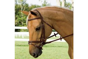 Vespucci Plain Raised Oakbark Jump Bridle with Flash