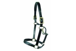 Walsh Black Leather Dressage Halter with Brass Fittings
